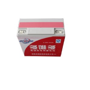 Dowedo-140-AH-Easy-Bike-or-Auto-Bike-Electric-Battery-1 (1)