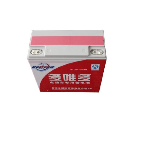Dowedo-140-AH-Easy-Bike-or-Auto-Bike-Electric-Battery-1 (1)