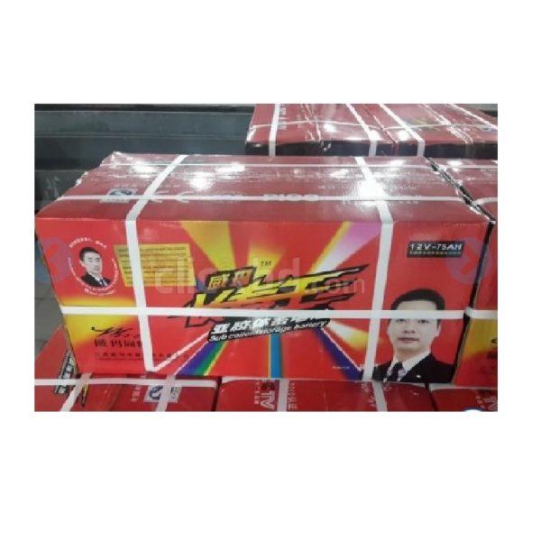 Weima-120-AH-Rickshaw-Electric -Battery (3)