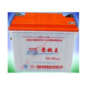 Champion 95-AH-Rickshaw-Electric -Battery-1